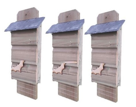 Bat Box with natural slate roof - Set of 3